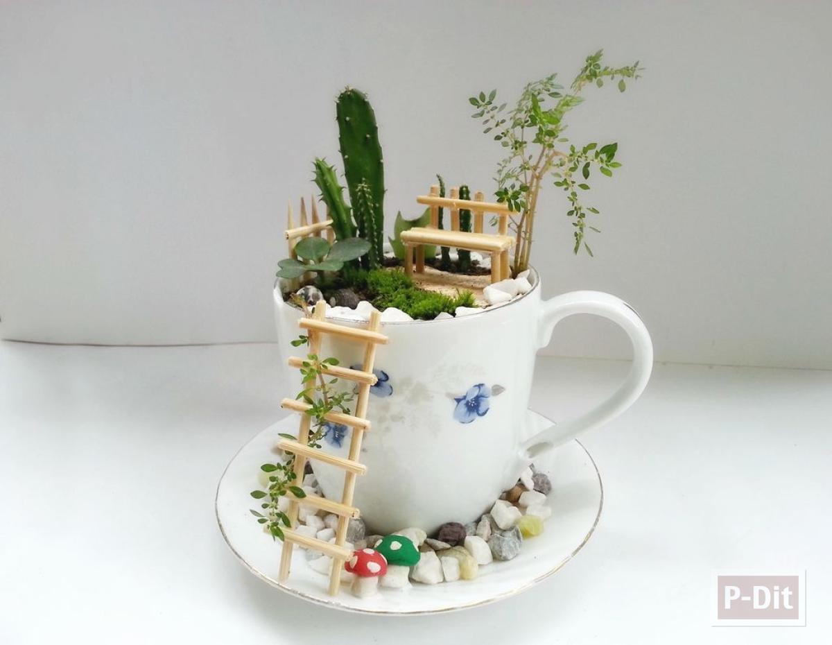 แก้วกาแฟ กับสวนเล็กๆ จัดเองแบบง่ายๆ